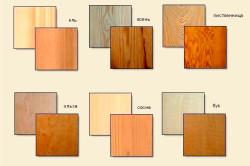 Виды древесины для бани