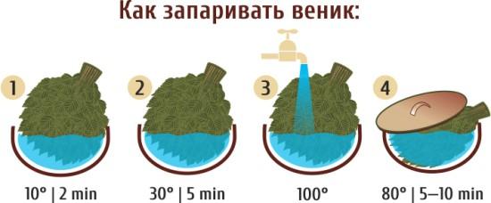 Как запарить веник для бани: рассмотрим все варианты