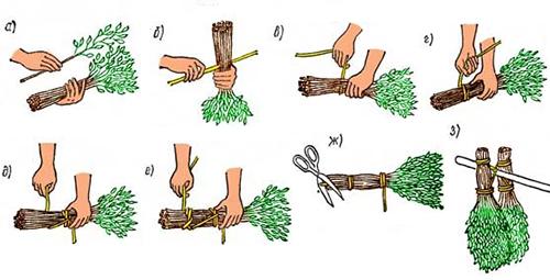 Схема изготовления березового веника